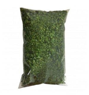 moringa-hojas-bogota
